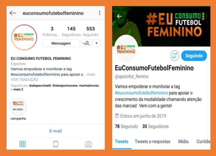 Redes sociais da campanha #EuApoioFutebolFeminino. Créditos: Rainhas do Drible.